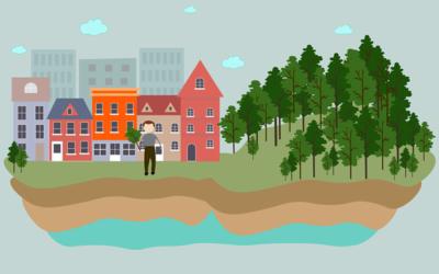 Nu kan alle donere træer til nye statslige Danske Folkeskove