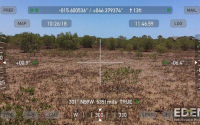 Se de nye billeder af vores mangrove-plantninger