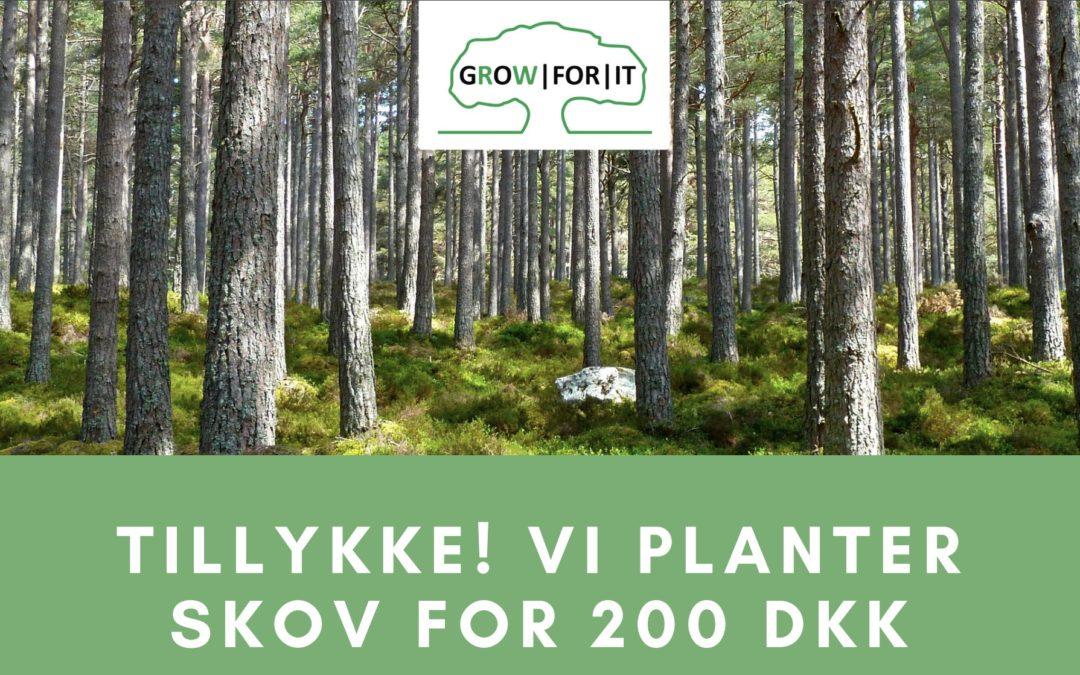 Klima-gavekort: Gør en ven CO₂-neutral i ét år for 200 DKK