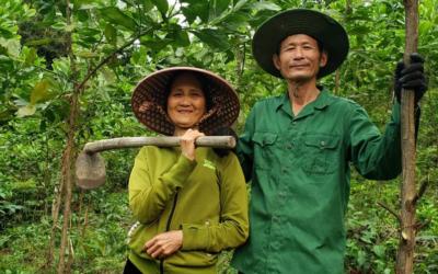 25 hektar skov på vej i Vietnam